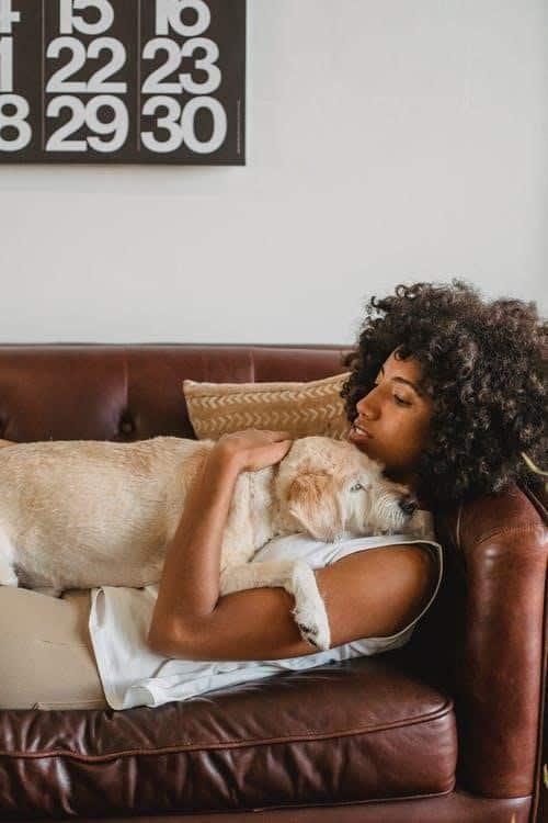 Comment puis-je savoir si mon chien peut devenir un chien de thérapie ?